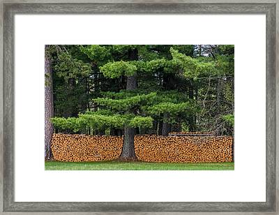 Stacked Fire Wood Framed Print