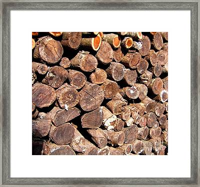 Stacked Tree Logs Framed Print by Yali Shi