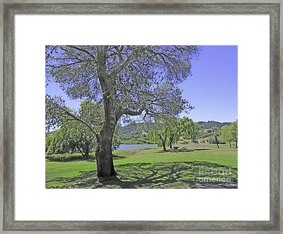 Stafford Lake Beauty Framed Print