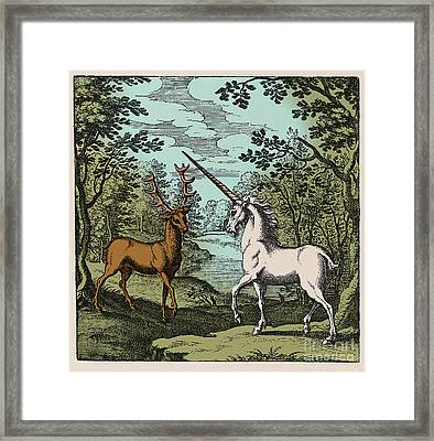 Stag And Unicorn 18th Century Framed Print by Science Source