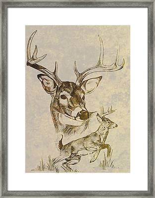 Stagged Framed Print