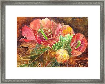 Staghorn In Bloom Framed Print