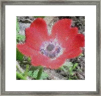 Framed Print featuring the photograph Stain Glass Anemone by Debra     Vatalaro