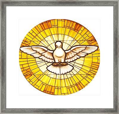 Stain Glass Dove Framed Print by Joseph Frank Baraba