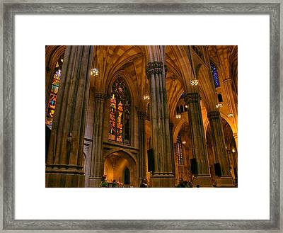 Stained Glass Beauty Framed Print