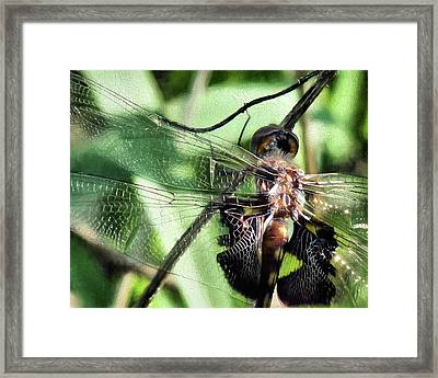Framed Print featuring the digital art Stained Glass Dragonfly by JC Findley