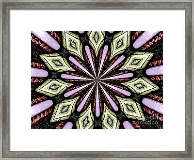 Stained Glass Kaleidoscope 25 Framed Print by Rose Santuci-Sofranko