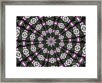 Stained Glass Kaleidoscope 3 Framed Print by Rose Santuci-Sofranko