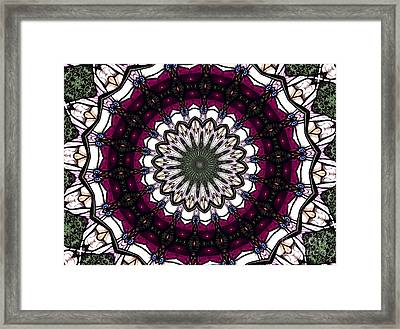 Stained Glass Kaleidoscope 4 Framed Print by Rose Santuci-Sofranko