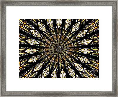 Stained Glass Kaleidoscope 5 Framed Print by Rose Santuci-Sofranko
