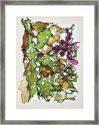 Stained Glass Framed Print by Lisabeth Billingsley