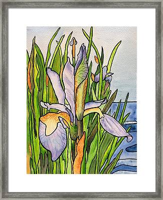 Stained Iris Framed Print