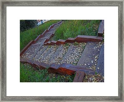 Framed Print featuring the photograph Stairs To Lake by Tammy Sutherland