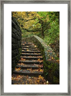 Stairway To Fall Framed Print by Lori Mellen-Pagliaro