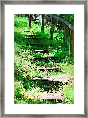 Framed Print featuring the photograph Stairway To Heaven by Donna Bentley