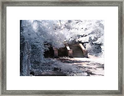 Stairway To Heaven Framed Print by Helga Novelli