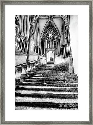 Framed Print featuring the photograph Stairway To Heaven by Tim Gainey