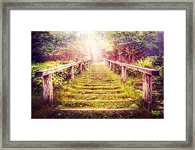Stairway To The Garden Framed Print by Debra and Dave Vanderlaan