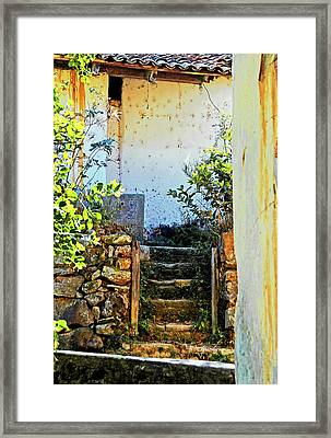 Stairway7880 Framed Print by David Mosby
