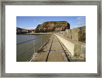 Staithes Framed Print by Nichola Denny