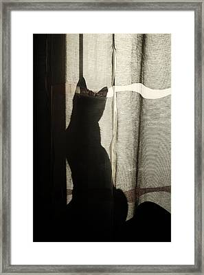 Stalker Framed Print by Cambion Art