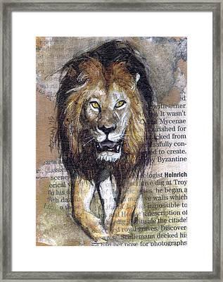Stalking Lion Framed Print