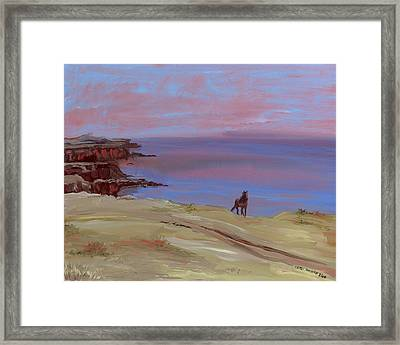 Stallion At Dingle Bay Framed Print by Cathy France