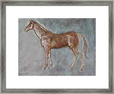 Stallion Framed Print by Deborah Dendler