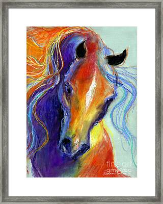 Stallion Horse Painting Framed Print by Svetlana Novikova