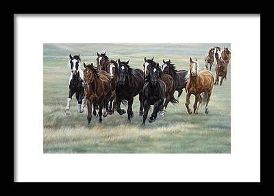 Equestrian Framed Prints