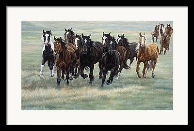 Stampede Framed Prints