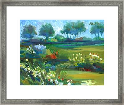 Stan Hywet Garden Framed Print