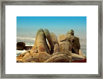 The Sentinels  Framed Print by Rick Maxwell