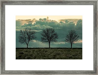Stand Against The Storm Framed Print