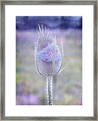 Framed Print featuring the digital art Stand Alone by Margaret Hormann Bfa