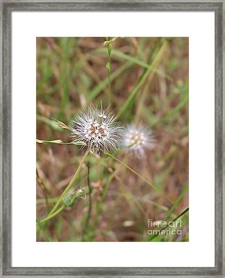 Framed Print featuring the photograph Stand Back by Marie Neder