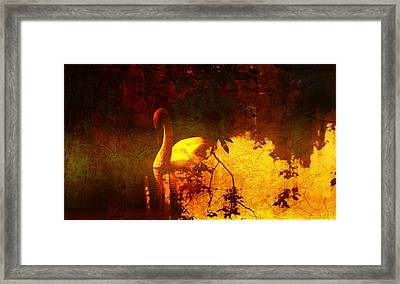Stand By  Me  Framed Print by Andrew Hunter
