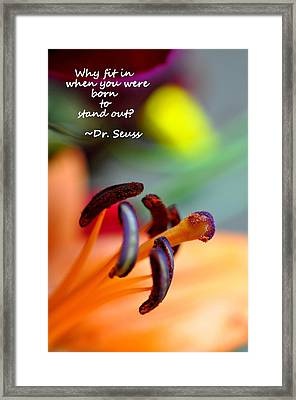 Stand Out Framed Print by Christine Ricker Brandt