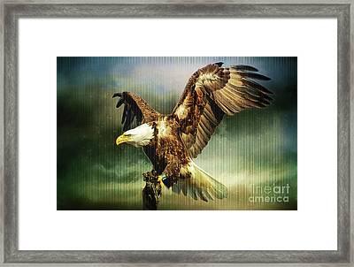 Standing Against The Storm Framed Print