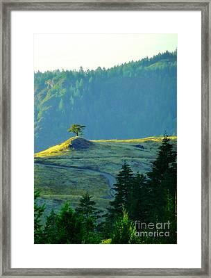 Standing Alone Framed Print by JoAnn SkyWatcher