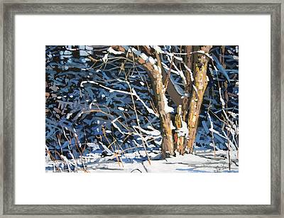 Standing Alone Framed Print by Larry Seiler