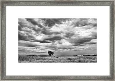 Framed Print featuring the photograph Standing Alone by Monte Stevens