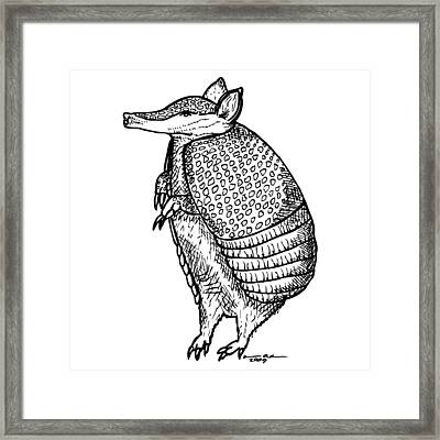 Standing Armadillo Framed Print by Karl Addison