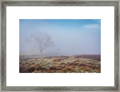 Framed Print featuring the photograph Standing Fiercely by Jeremy Lavender Photography