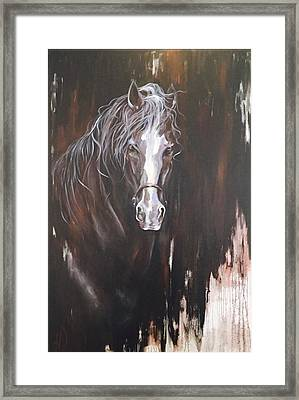Standing Firm Framed Print by Heather Roddy
