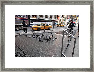 Standing Guard Framed Print by Rob Hans