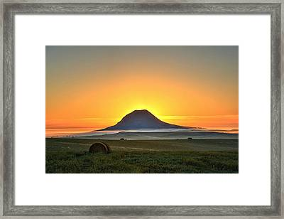 Standing In The Shadow Framed Print by Fiskr Larsen