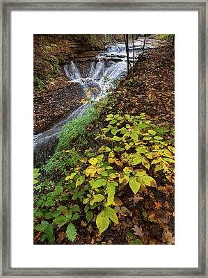 Standing On The Edge Framed Print