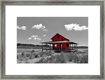 Standing Out All Alone Framed Print