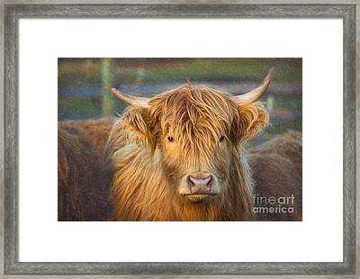 Standing Out In The Herd Framed Print